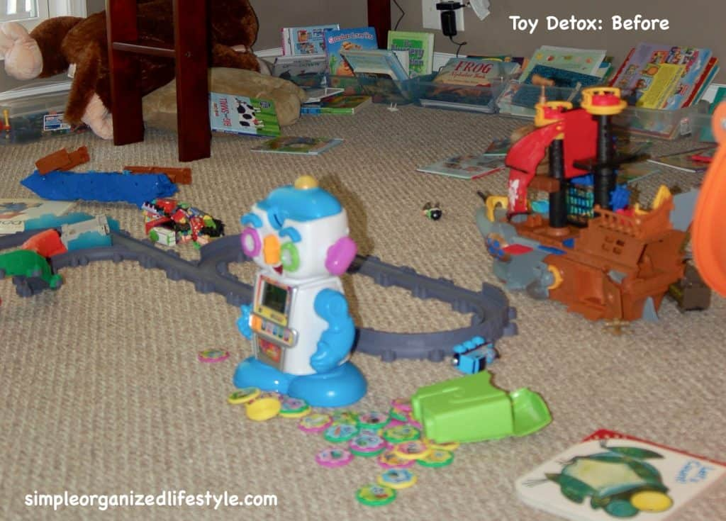 Toy Detox Before -2