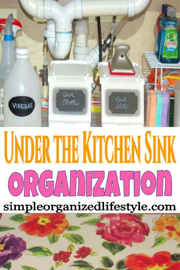 Items organized under the kitchen sink