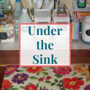 "Under kitchen sink view with text overlay that reads ""Under the Sink"""